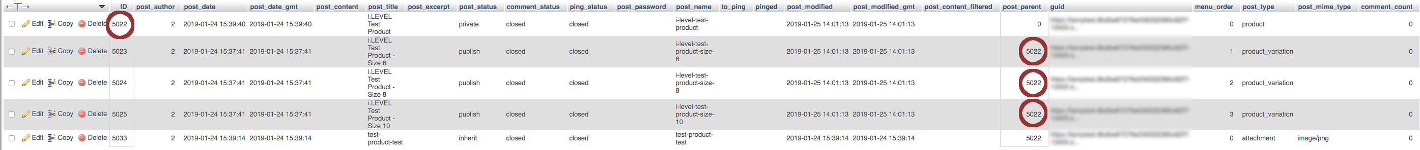 Screenshot of WooCommerce Products and related Variations in the wp_posts table